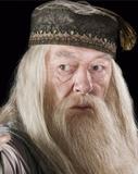 """Quem deve interpretar Dumbledore nas sequências de """"Animais Fantásticos e Onde Habitam""""?"""