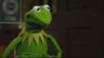 Kermit nega oficialmente os rumores de seu suposto romance com outra porquinha
